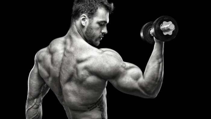 muscular-man-back-dianabol