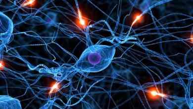 Como restaurar habilidades perdidas com neurotecnologia 2