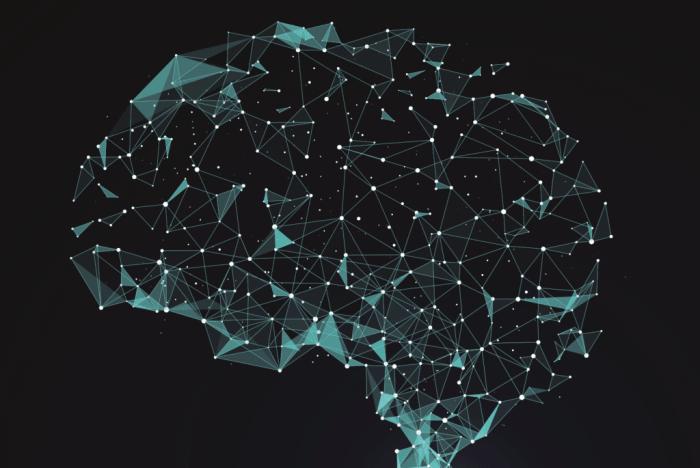 O Cérebro humano foi conectado à internet