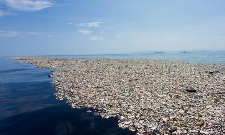 Plastivida participará com ações de educação ambiental no Lançamento do Plano Nacional de Combate ao Lixo no Mar 1