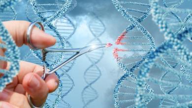 CRISPR usado em humanos pela primeira vez