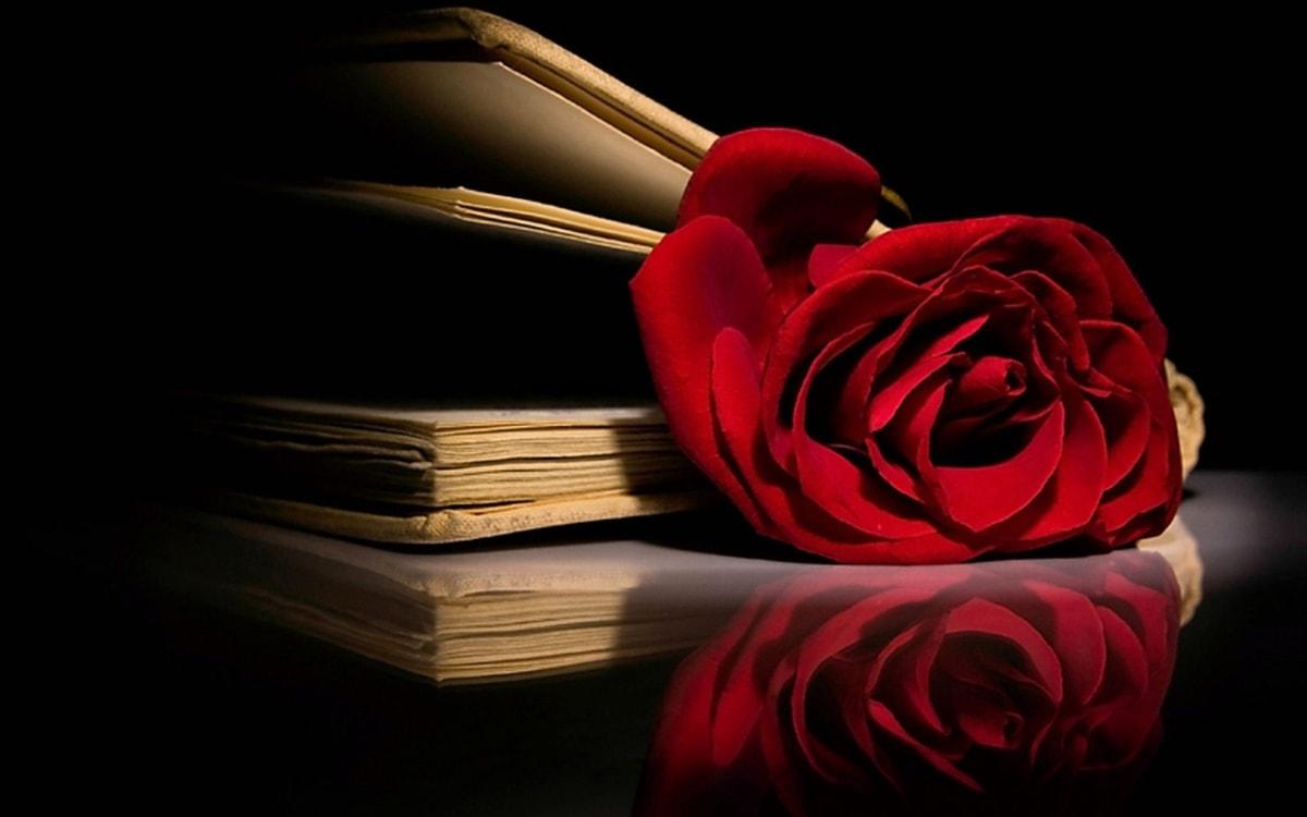 O Nome da Rosa: Enredo e Significado da obra de Umberto Eco - Luigi Angelino
