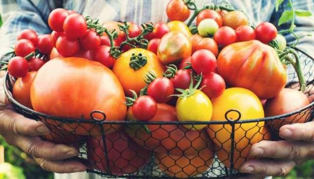 Alimentos orgânicos não são bons apenas para o corpo, mas também para a mente e a alma