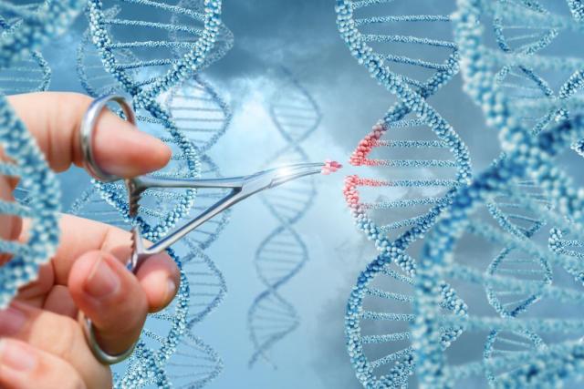 CRISPR usado em humanos pela primeira vez nos EUA