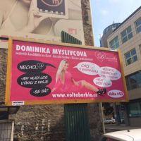 A zase ta Dominika! Mrkněte na nový, ještě neuvěřitelnější volební plakát!