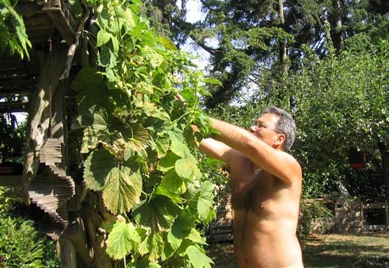 Pozor na naháče v zahradách, pozítří je den Světový den nahého zahradnictví