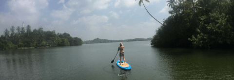 Stand Up Paddling in Sri Lanka
