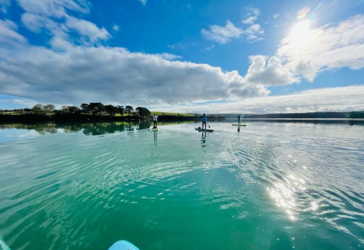 Guided paddle board tour on Salcombe Estuary