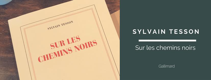 Sylvains Tesson - les chemins noirs