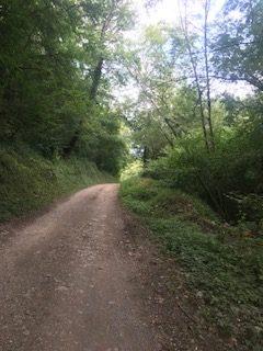 Vallée du Célé Chemin avant Boussac