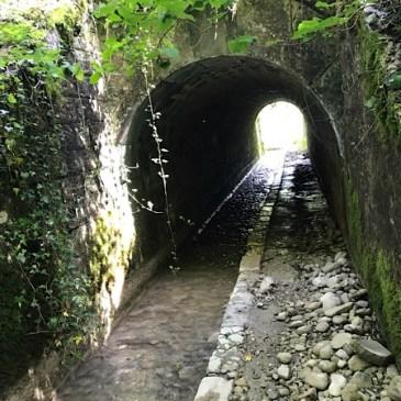 Jour 6. : Bellegarde – Pougny