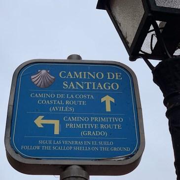 Le camino primitivo : Oviedo