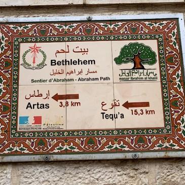 Sur le sentier d'Abraham-5 de Bethléem à Tuqu'a