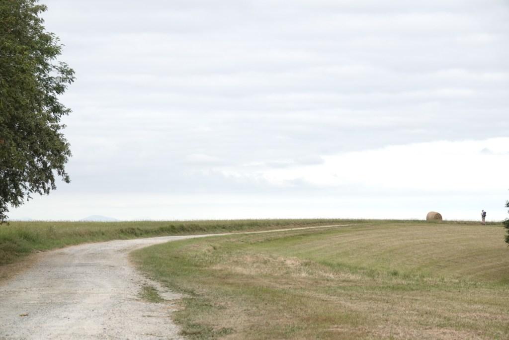 chemin de compostelle après Arthez