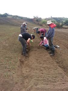 CICA promueve buenas practicas agricolas2