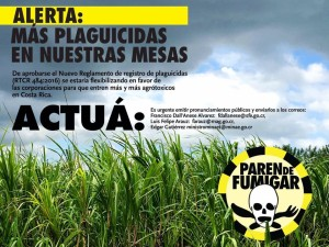 Plaguicidas (2)