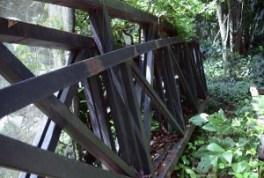 puente-en-mariposario-de-ucr4