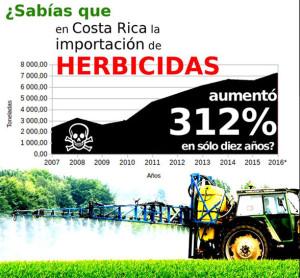 Perez Zeledon primer canton libre de herbicidas4