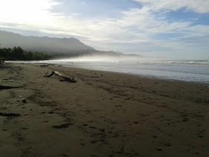 El cambio climatico ya tiene un impacto en el Parque Nacional Marino Ballena2