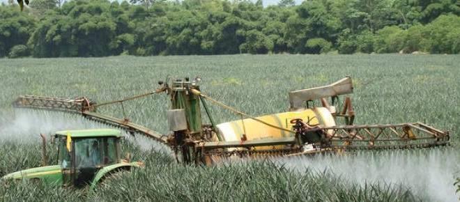 A proposito de un reciente reportaje sobre la pina costarricense difundido por la DW en Alemania3