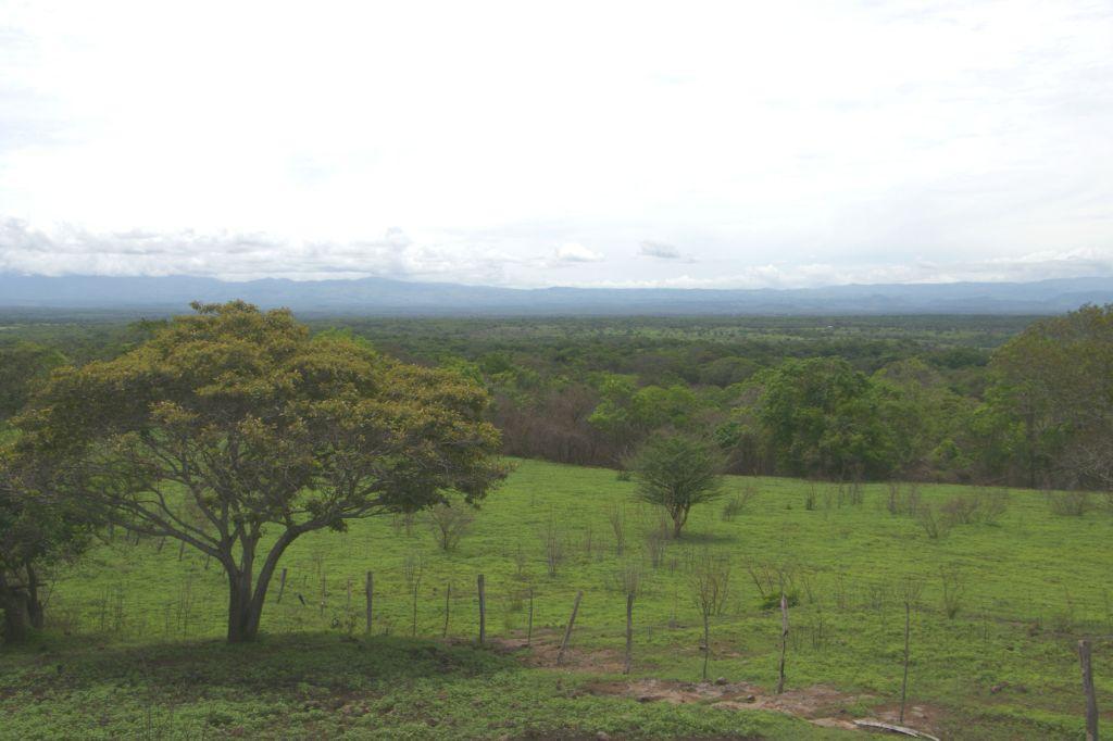 Megaproyecto del Paacume afectara a la unica reserva biologica de bosque tropical seco del pais4