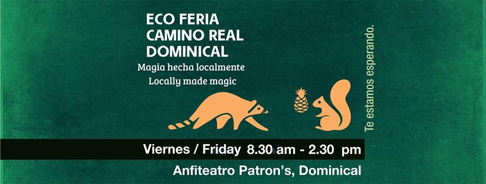 Eco Feria Camino Real Dominical