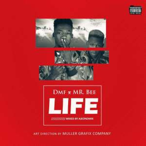 DMF Ft. Mr Bee – Life [Music & Video]
