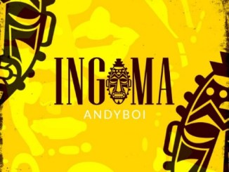 DOWNLOAD Andyboi – Ingoma Album