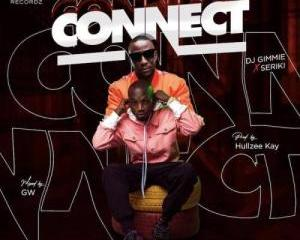 DJ Gimme Ft. Seriki – Connect