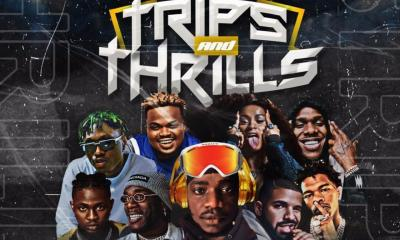 ALBUM: DJ Larex_KIMI –  Trips and Thrills Mix