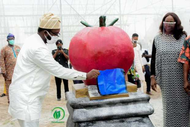Osun State Government To Breed 2000 Direct Jobs In The Agricultural Sector