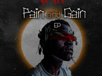 Mr Bee - Pain And Gain (EP)