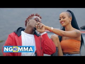 Willy Paul – Coco Ft. Avril (Audio + Video)