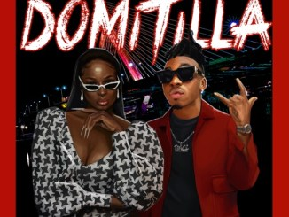 Lisa Yaro – Domitila Ft. Mayorkun