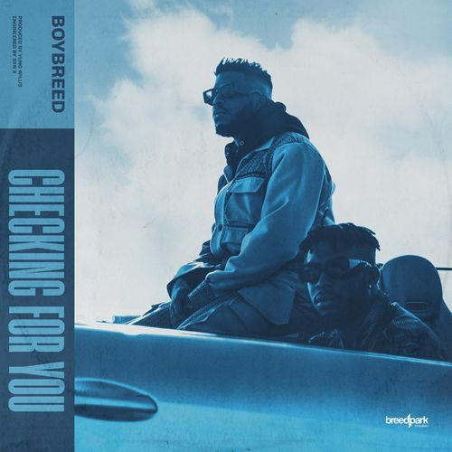 Boybreed – Checking For You