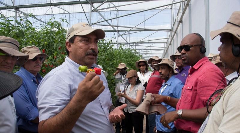 Ministros conocen experiencias exitosas en yucat n de for Crianza de camarones