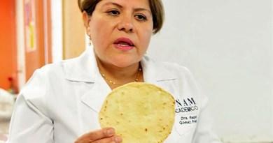 Logra científica mexicana tortillas de harina contra desnutrición, obesidad y diabetes