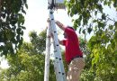 El Ayuntamiento de Progreso continúa con la instalación de internet a más parques