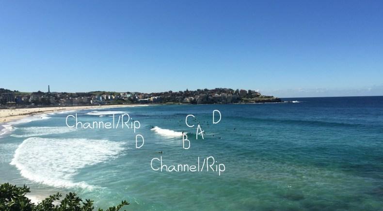 Auf diese Dinge musst du beim Surf Spot Check achten So geht ein Surfspot check