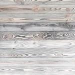 Grey Taro Pine