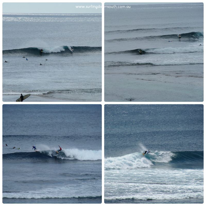 2015 Single Fin Theory surfing 1 collage_photocat