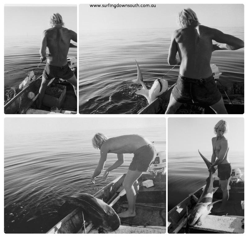 1974 Scarborough Mick Black shark 4 collage_photocat