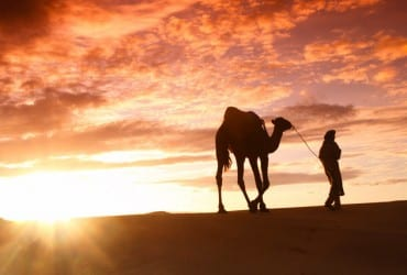 Silk Road tour: Travelling through the desert with a camel in Iran