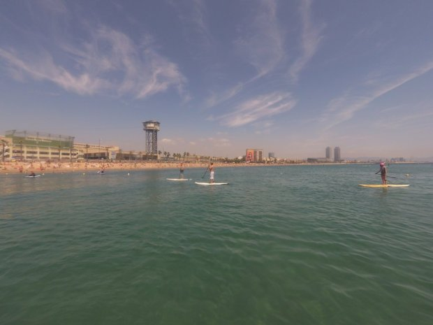 grupo de susrfers haciendo paddle surf en Barcelona