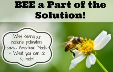 saving pollinators poster