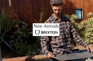 brixton 2021 board shorts