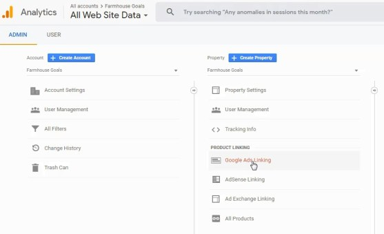 Collega Google Ads e Google Analytics Account