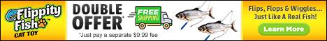 Flippity Fish Online Double Offer