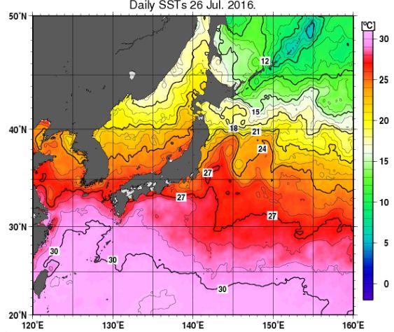 2016年海水温