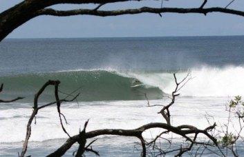 PN wave